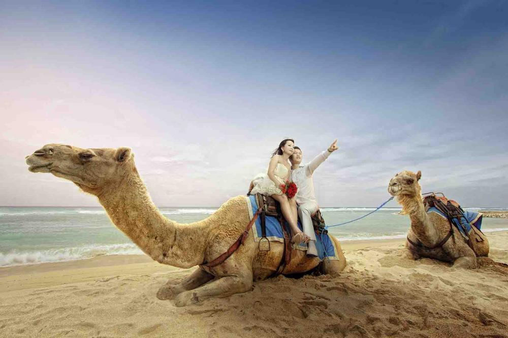 Camel Ride | Twins Photography Bali.jpg